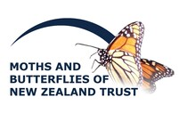 Moths and Butterflies of NZ Trust store